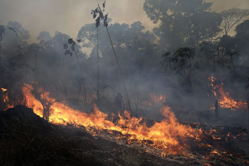 Brazil, Bolivia assessing needs after Canada offers $15M aid for Amazon fires